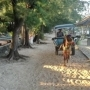 lombok classic
