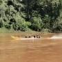 Oost-Kalimantan